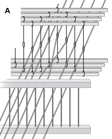 Weaving Error, Crossed Threads A