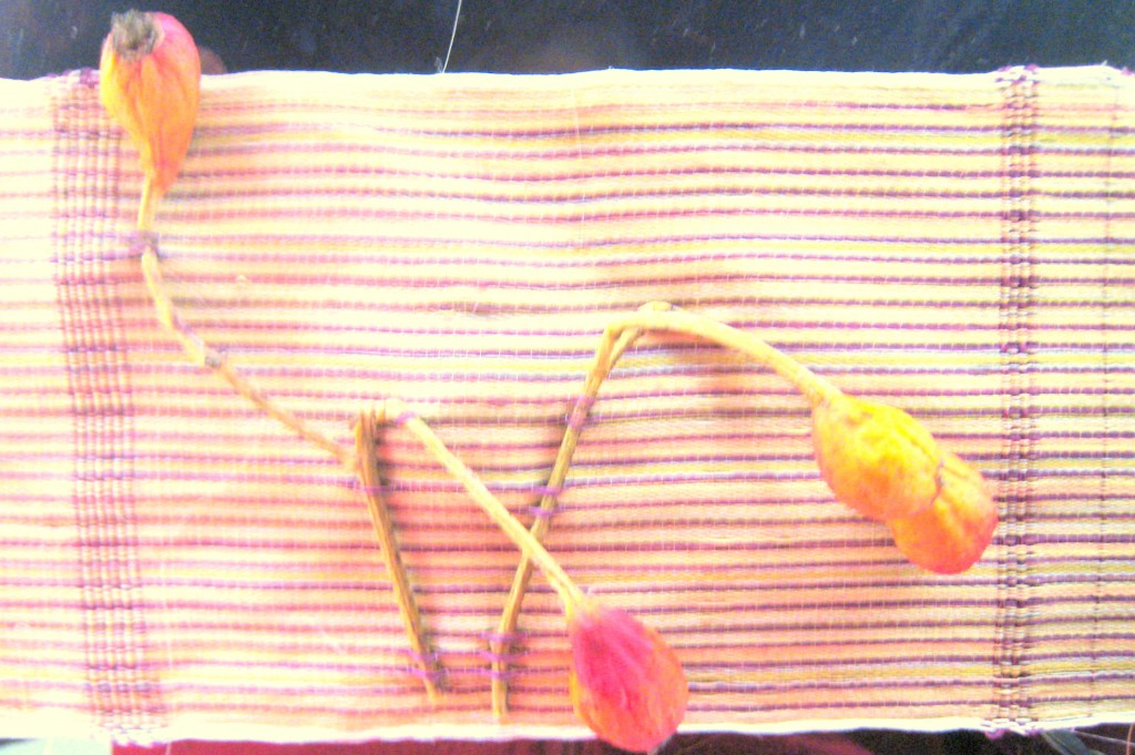 Weaving with Rose Hips, 2
