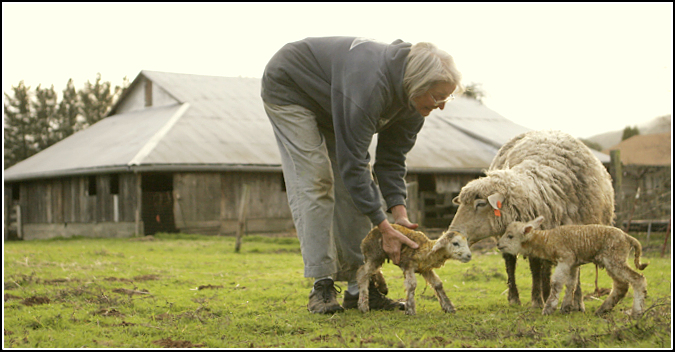 Mimi and Lamb